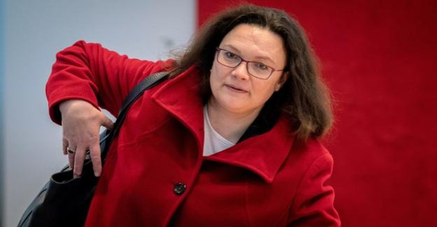 Andrea Nahles : SPD-Chef in Need