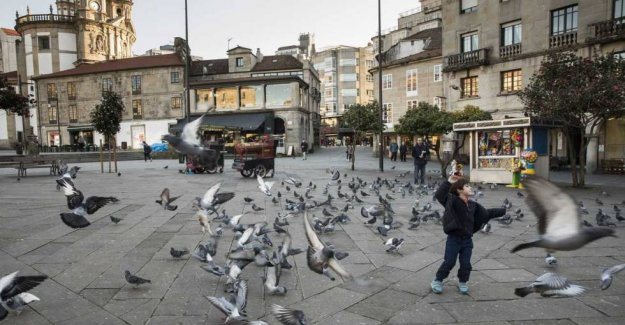 Pontevedra, the city that managed to beat the cars
