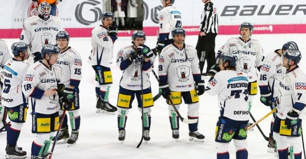 Polar bears are losing 2:4 in Wolfsburg : In free fall