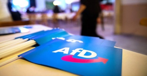 Designation as a test case: AfD sued for the protection of the Constitution