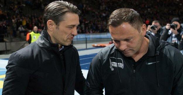 Hertha BSC in the Bundesliga-season 2018/2019 : Arne Maier is against FC Bayern