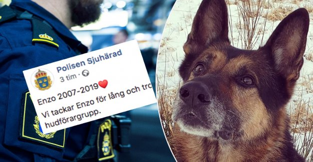 Police fine tribute to Enzo: Thank you for everything