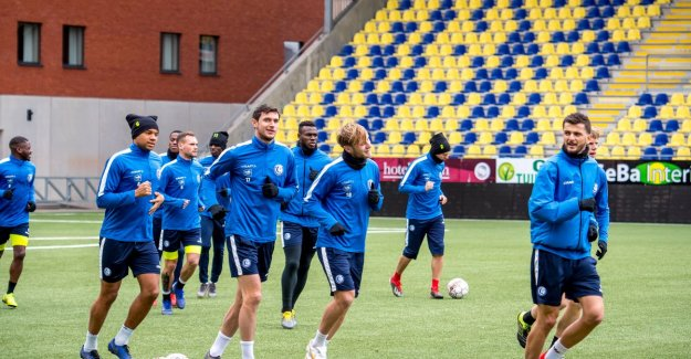 AA Gent will leave nothing to chance: Buffalo's training day for decisive clash all on the artificial turf of Stayen