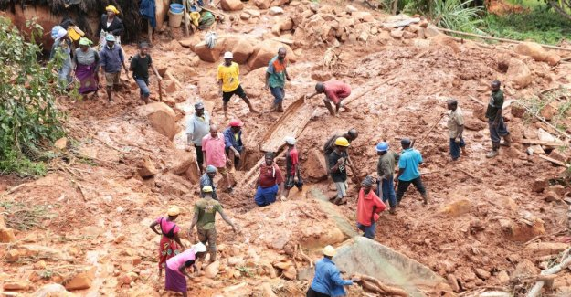 Almost 2 million affected by the cyclone Idai