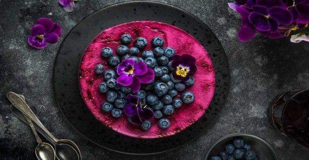 Blåbärscheesecake – vegan and gluten-free