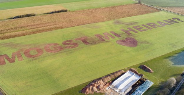Farmer sows a huge marriage proposal in the field