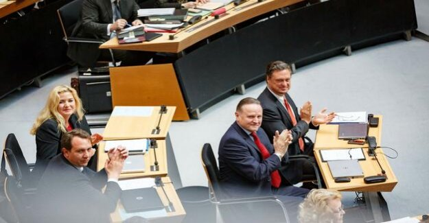 Mid-term review of AfD group wants to take over government responsibility