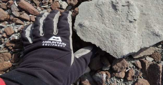 Dinosaur footprint in Antarctica discovered