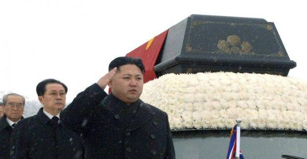 Report: north Korea outrank fish, Kim Jong-uns right