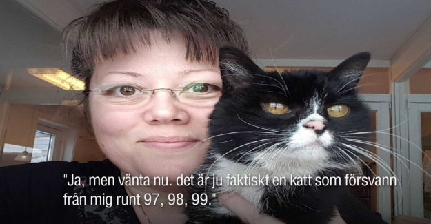 So found the cat Linnéa – after 20 years