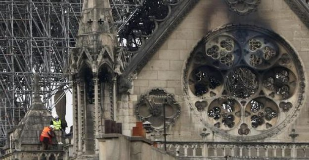 To Notre-Dame-Brand: We, the people of the tree are the builders