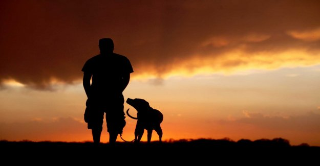 Dog or not, your genes affect the choice