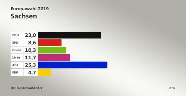 European election: AfD in the East, Green in the cities
