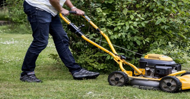 Fifty, but damaged by lawn mowers