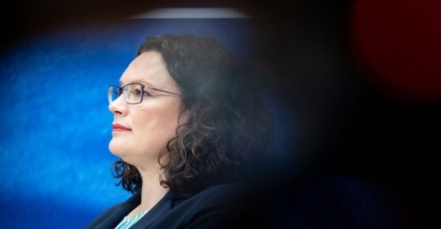 Power struggle in the SPD: Nahles wobbles