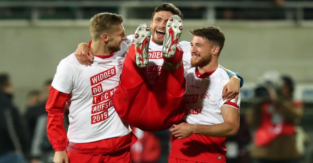 The 1. FC Köln is on the rise again in the Bundesliga