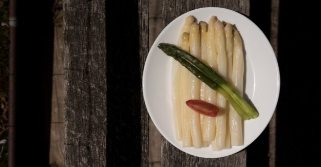 Where there is the best asparagus in the Zurich Region