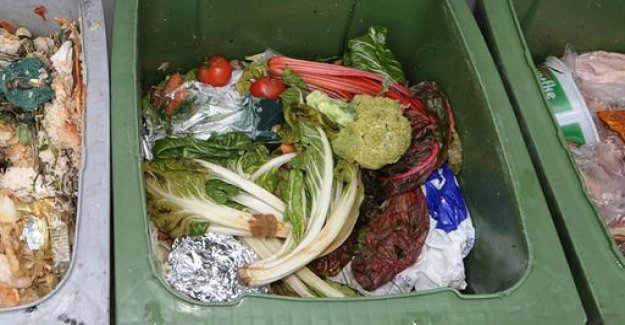EU-States in comparison: concepts for less food in the garbage
