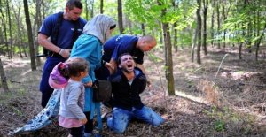 Europe rushes to his border dogs to refugees
