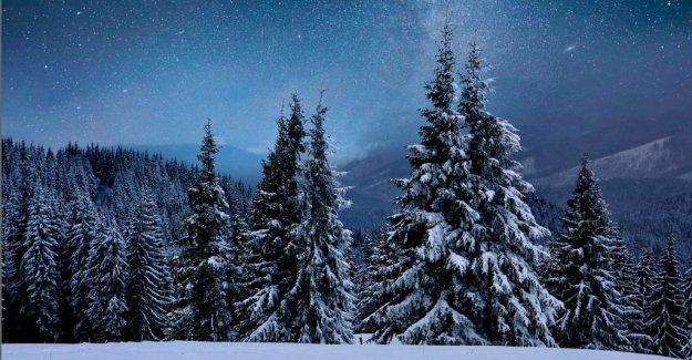 A nyårsdikt by Linnea Axelsson: The new year