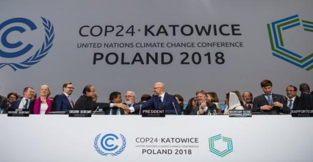 According to the UN climate summit: can we still be saved?