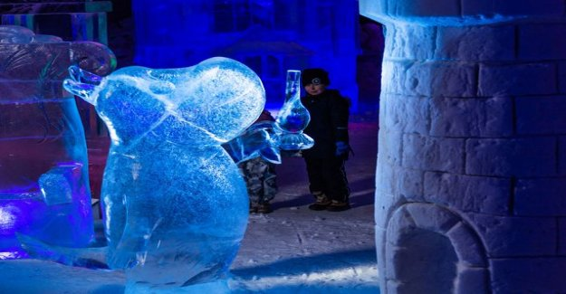 Ad water ladybug: Savo opened the new magic Moomin-the ice sculpture exhibition - this has to be experienced