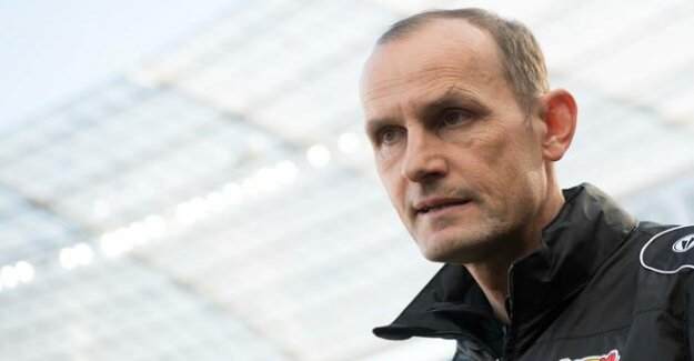 After the victory against Hertha : Leverkusen, Germany Heiko dismisses Gorgeous, Peter Bosz as new coach