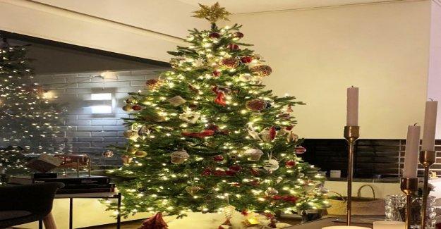 Celebrities sparkle on the christmas tree - This looks Mint Raikkonen, Martina genuine magazine, Sara Snitch and Janina fry's tree this year