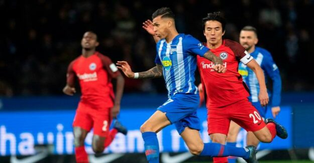 Davie Selke from Hertha BSC in the Interview : The national team, I trust myself