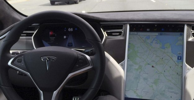 Dutch court: man is a director at Tesla and should not call