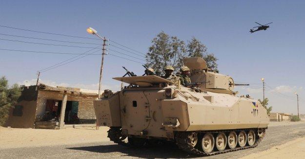 Egypt: 14 jihadists killed in firefight