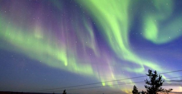 Enjoy the northern lights from the comfort of your chair thanks to these webcams