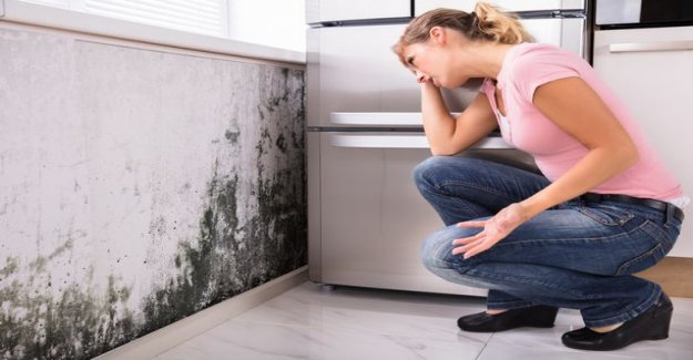 Health threatening mold or moisture damage at home? A simple online calculator can help you figure out what it will cost to repair