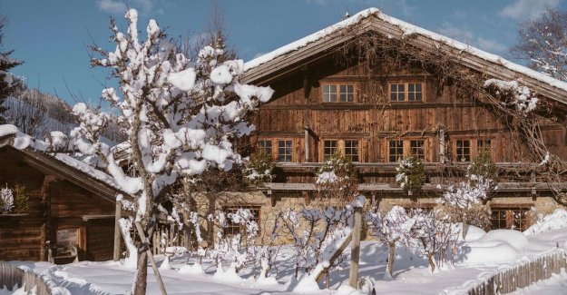 Insanely live: from the farm to your luxury chalet, full of natural materials