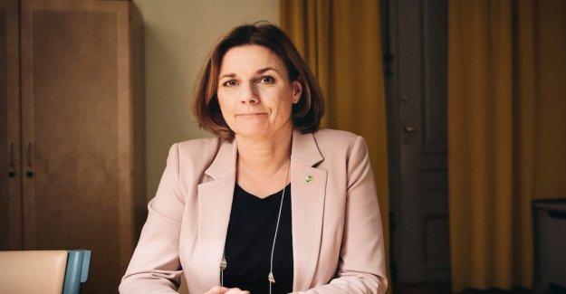 Isabella Lövin: Pressed mood in Katowice