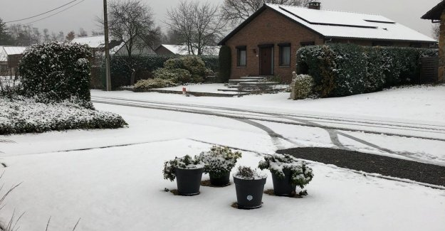 King Winter to visit: parts of Limburg and Oost-Brabant is covered with a nice layer of snow