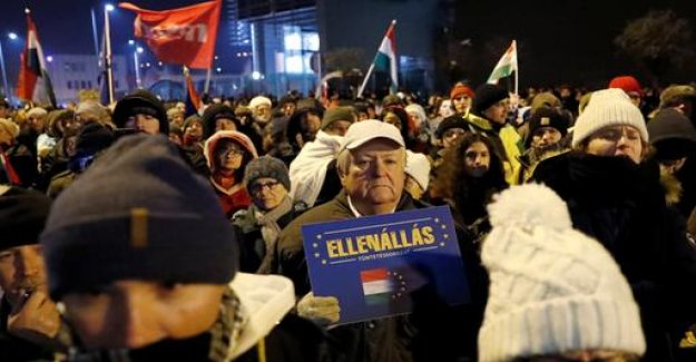 Protests in Hungary: United against Orban's labour law