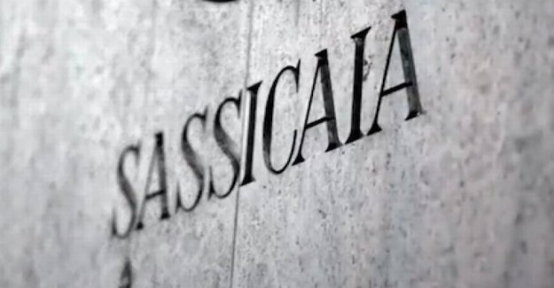 Sassicaia – the wine with its very own DOC