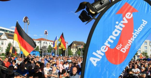 Saxony, Thuringia and Brandenburg : the AfD is more than a Million euros in Ost-election campaigns