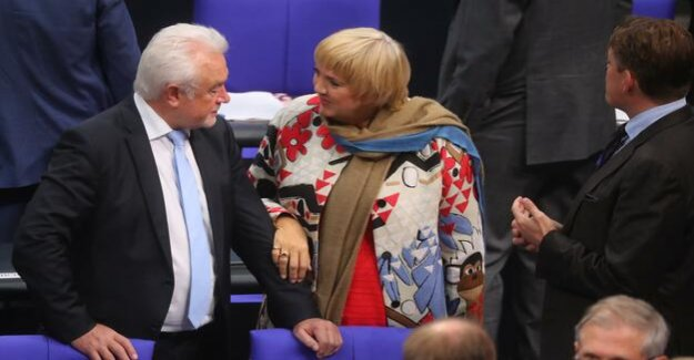 Since the entry of the AfD : Roth and Kubicki decay of manners to complain in the Bundestag