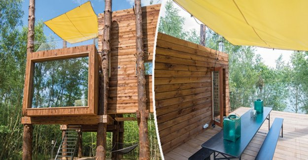 Special bargain: a luxury tree house with all the trimmings... for 245.000 euros