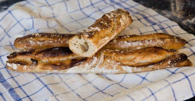 The bakery industry adds surdegsbröden under the microscope