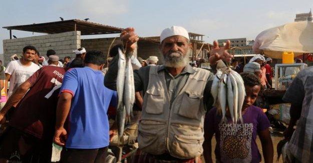 Yemen : Despite ceasefire: fighting in the port city of Houdaida go further