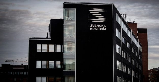 A senior leader at the Swedish national grid deleted documents in order to escape the examination