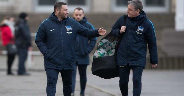 Co-coach of Hertha BSC : Rainer Widmayer, changes in the summer to VfB Stuttgart