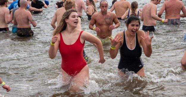 Coldest Bibberduik ever in Ghent: 195 brave, defy water of 3 degrees