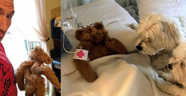 Cutest ever? This dad goes viral after he knuffelbeertje 'reanimeert' and to infuse explains