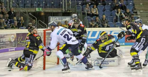 Eisbären Berlin of the football season 2018/19 : Clear 2:6 defeat at the Krefeld penguins