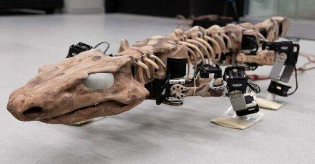 Fossil-High Tech : Running time machine, made in Berlin