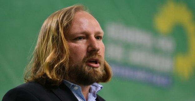 Green party leader Hofreiter : the government's power train chief the scapegoat for their mistakes